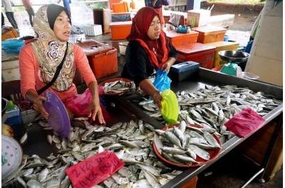 Malaysia: Hiệp hội người tiêu dùng tuyên bố cá có thể là sản phẩm không Halal